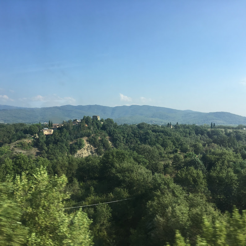 view of the countryside while riding a train through Italy