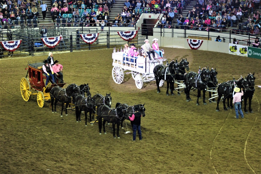 a black and a white stage coach tethered with six black horses each.